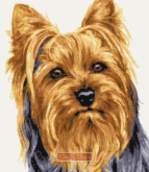Yorkshire Terrier v2 counted cross stitch kit