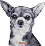 Black and white Chihuahua counted cross stitch kit