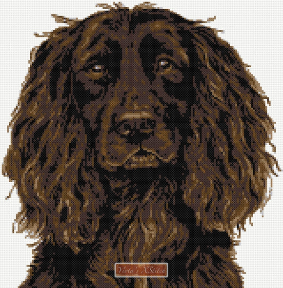 Brown Working cocker spaniel counted cross stitch kit