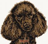 Chocolate poodle counted cross stitch kit
