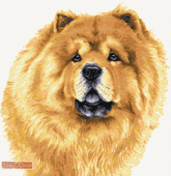 Chow Chow counted cross stitch kit