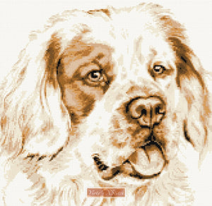 Clumber spaniel counted cross stitch kit