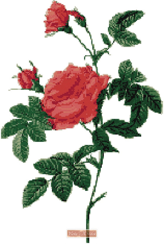 Rose buds counted cross stitch kit