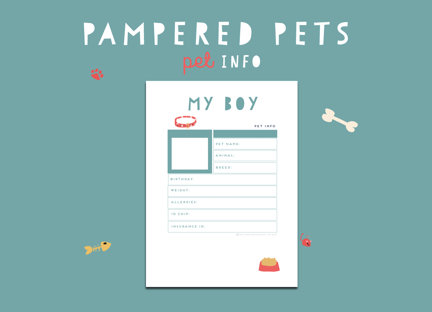 Pampered Pets Pet Info (Boy)