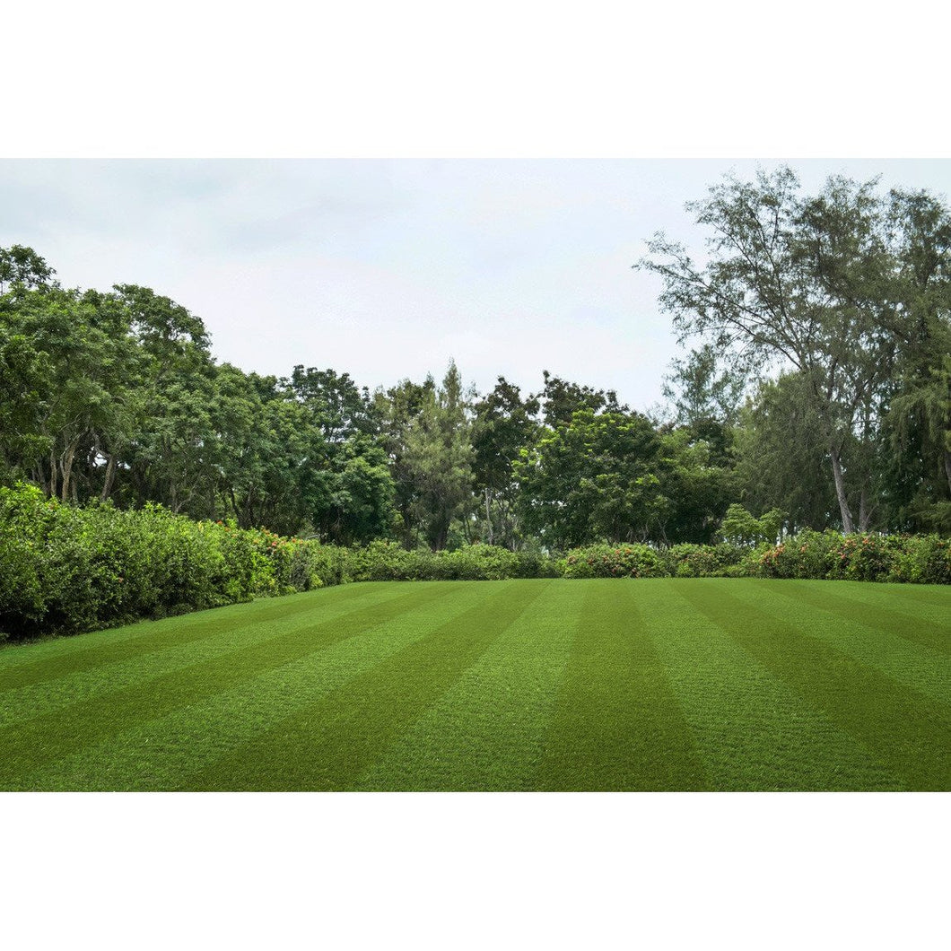Pro lawn Multi Lane-Artificial Grass-Carpet Mills Maidstone-Carpet Mills Maidstone