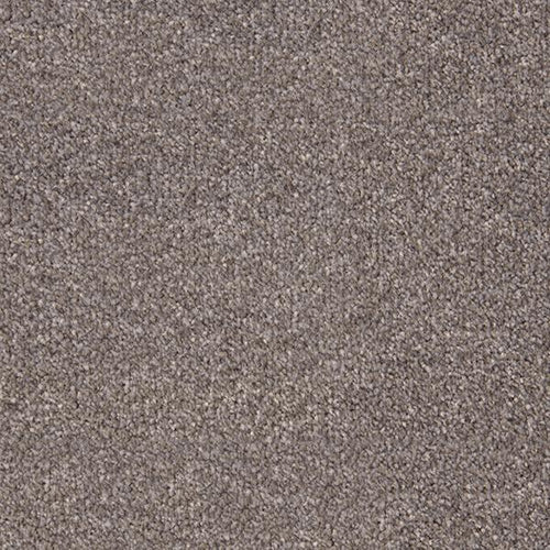 Stainfree Style French Grey-Carpet-Abingdon-Carpet Mills Maidstone