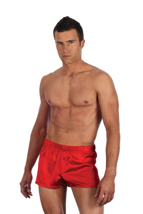 Gregg Homme Silk Spandex Boxers