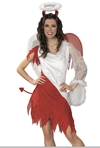 Heavenly Devil Costume