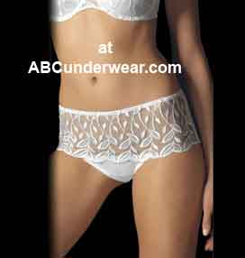 Lace Desire Modern Hipster Brief