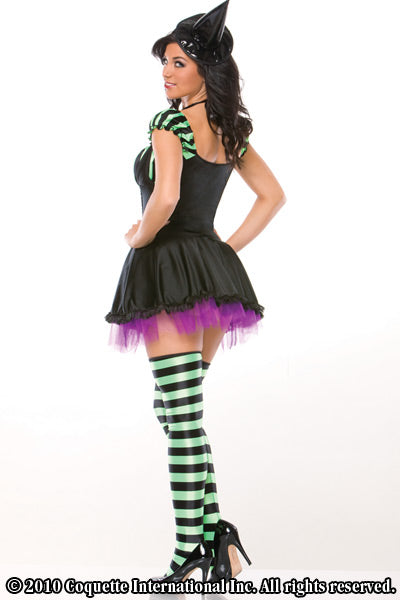 Miss Witchy-Poo Costume