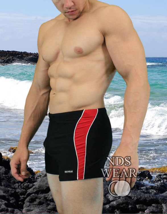 NDS Wear Sexy Side Stripe Mens Swim Trunk
