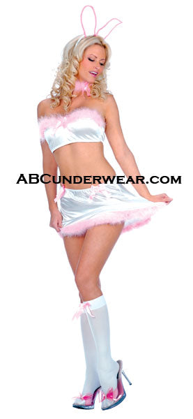 4 Piece Sexy Bunny Outfit Costume - Closeout