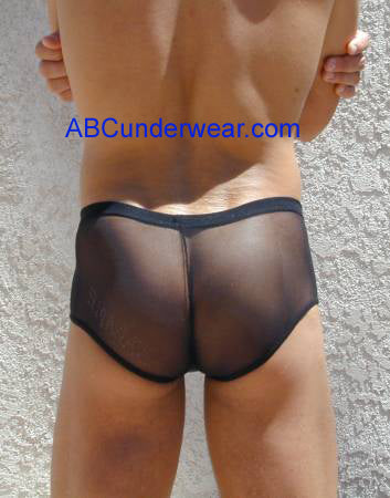 Sheer Pouch Brief