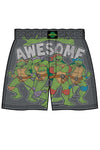 TMNT Retro Awesome Men's Boxer