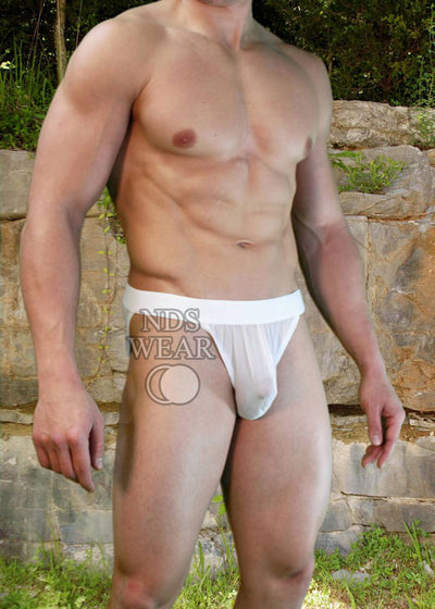 Zeus Open-Side Sheer Mens Brief