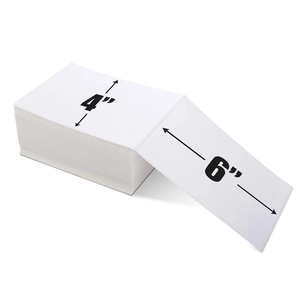Shipping Label 4x6 inch (500 PCS) I Printeet M246