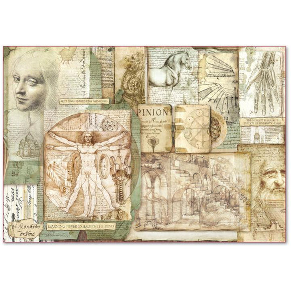 NEW Stamperia 48 x 33 Decoupage Rice Paper -  Leonardo DFS390