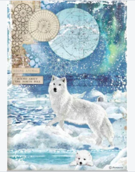 NEW Stamperia A4 Rice Paper Packed Wolf DFSA4480