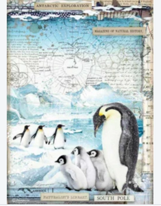 Stamperia A4 Rice Paper Packed Penguins DFSA4479