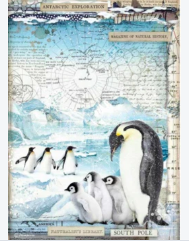 NEW Stamperia A4 Rice Paper Packed Penguins DFSA4479