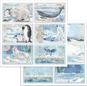 "Pre-order NEW Stamperia 'Artic - Foglio"" -  Double Face Paper 30 x 30 SBB732"