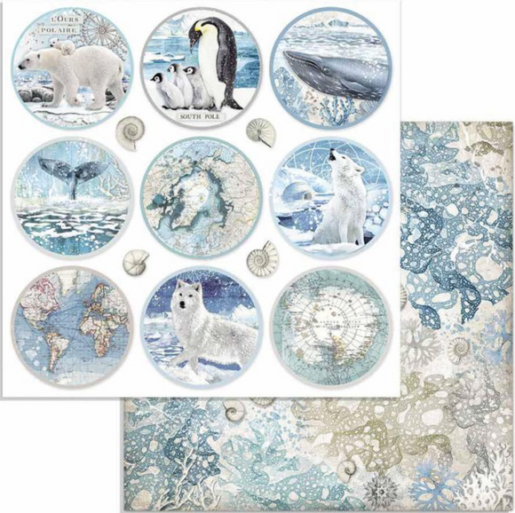 NEW Stamperia 'Arctic Rounds' -  Double Face Paper 30 x 30 SBB734