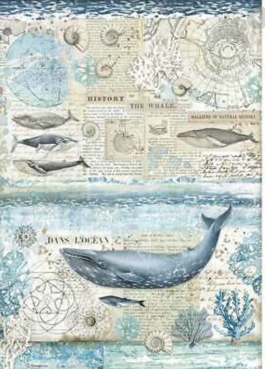 NEW Stamperia A3 Rice Paper - Antarctic Exploration  Whales- DFSA3077
