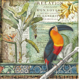"NEW Stamperia 'Amazonia Toucan""-  Double Face Paper 30 x 30 SBB765"