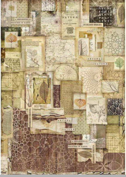 Stamperia Decoupage Rice Paper A3-  Packed Forest DFSA3051