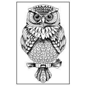 Stamperia Natural Rubber Stamps 7x11cm - Owl - WTKCC130