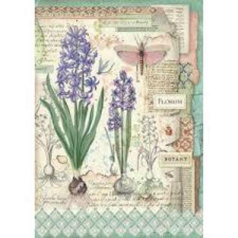 NEW Stamperia A4 Decoupage Rice Paper -  Botanic Bulbs DFSA4363