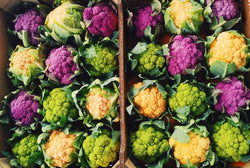 Holland Colour Cauliflower