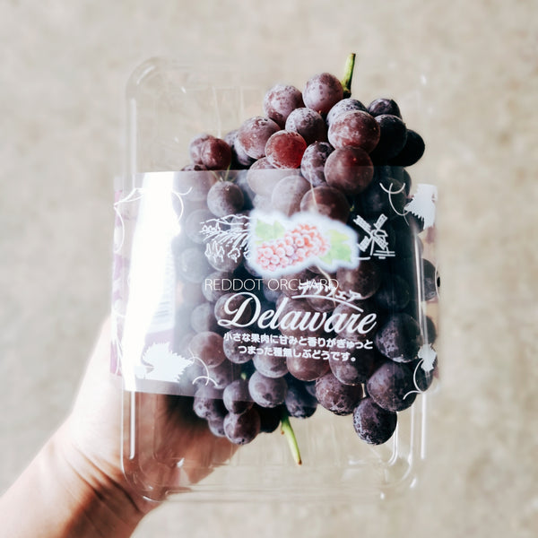 Japan Delaware Champagne Grapes