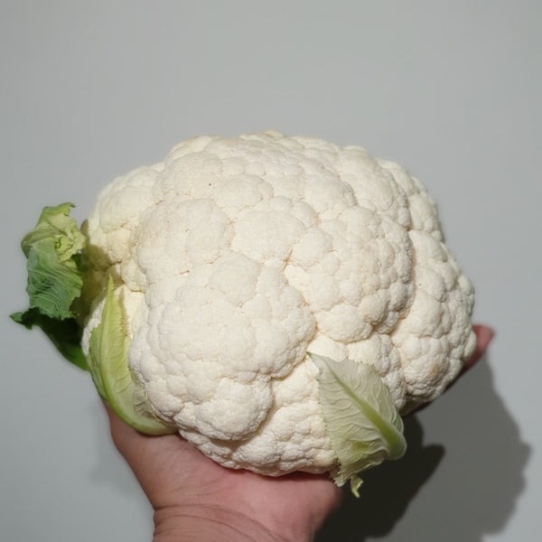 Australia Cauliflower