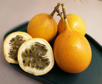 Ecuador Sweet Granadilla [Set of 3]