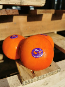 XL NZ FuYu Persimmon