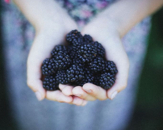 Sweet Blackberry