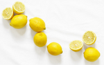 XL Lemon [Set of 4]