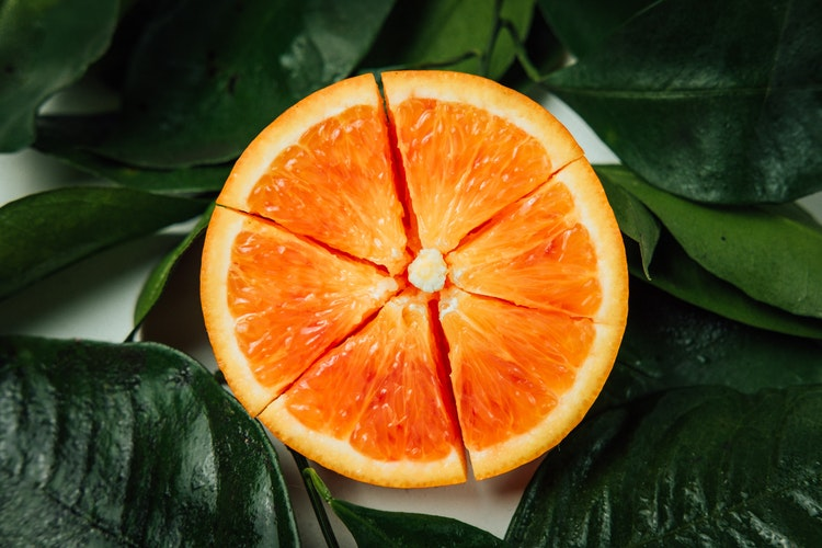 Valencia Oranges [Set of 5]