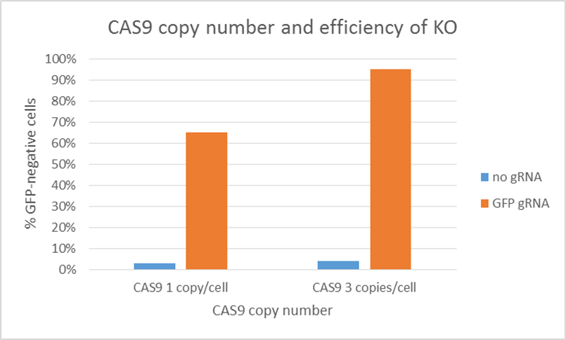 Custom Cas9 and dCas9-Variant Cell Lines