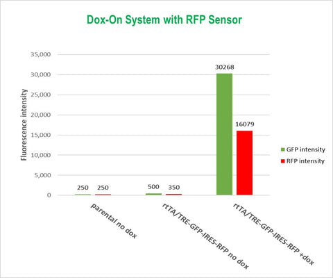 Dox-on-System-with-RFP-Sensor-Cellecta