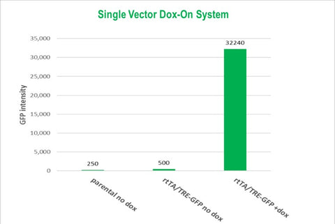 Single-vector-Dox-On-system-Results-Cellecta