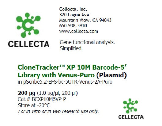 CloneTracker XP™ 10M Barcode-5' Library in pScribe5.2-Venus-Puro