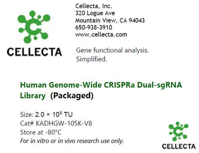 Cellecta Human dual-guide CRISPRa library-packaged