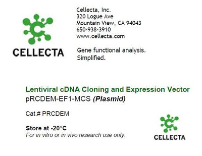 cDNA Cloning Vector with Single Transcript (EF1/CMV-MCS-2A-selection)