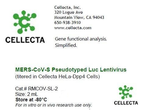 MERS-CoV-S Pseudotyped Luc Lentivirus (titered in Cellecta HeLa-Dpp4 Cells)