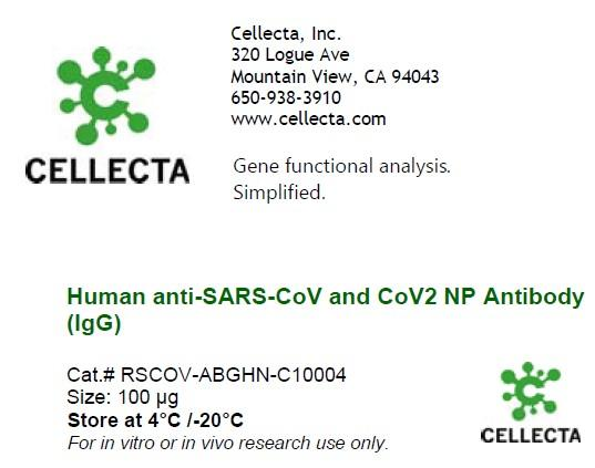 Human anti-SARS-CoV and CoV2 NP Antibody (IgG)
