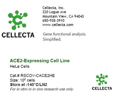 ACE2-Expressing Cell Line (for SARS-CoV-S, SARS-CoV2-S, SARS-CoV2-S-D614G assays)
