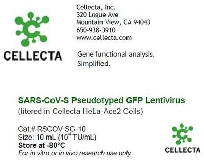 SARS-CoV-S Pseudotyped GFP Lentivirus (titered in Cellecta HeLa-Ace2 Cells)