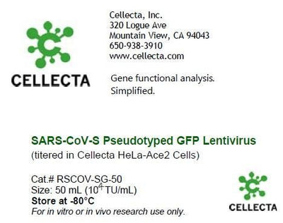 SARS-CoV2-S Pseudotyped GFP Lentivirus (titered in Cellecta HeLa-Ace2 Cells)